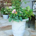 Updating Your Planting Pots