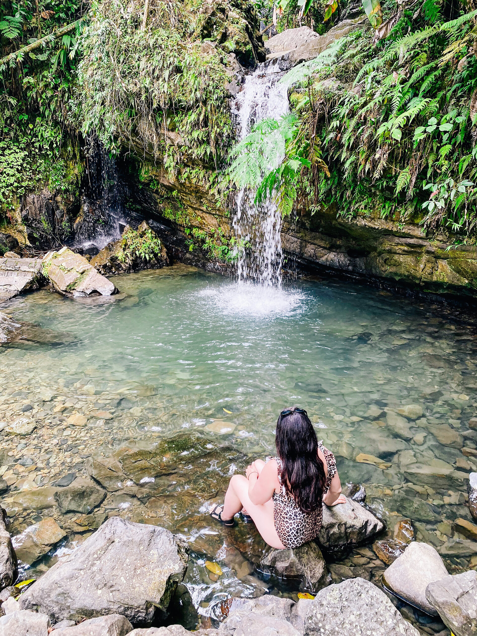 An Itinerary Traveling to Puerto Rico with Kids of where to stay and what to do for a full week!  This is a perfect guide for traveling with older kids     Darling Darleen Top Lifestyle CT Blogger #puertorico #oldsanjuan #elyunquerainforest