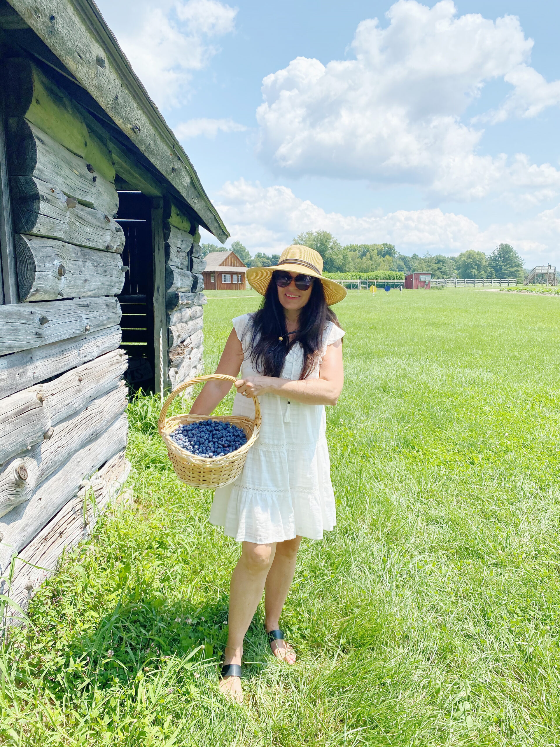 Blueberry Picking with Guiltless Blueberry Cobbler Recipe || Darling Darleen CT Top Lifestyle Blogger #blueberrypicking #blueberrycobbler